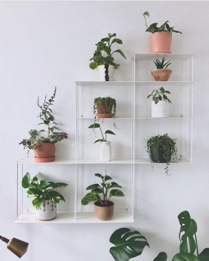 17 Easy DIY Indoor Plant Wall Decoration For Your Home Greenery 14