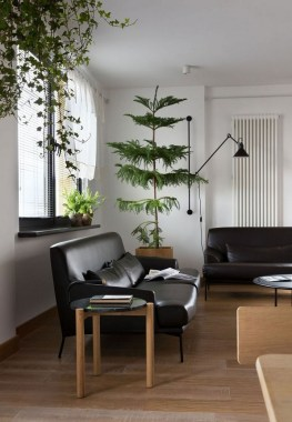 18 Apartment Jazzed Up With Plants For Air Purification 09