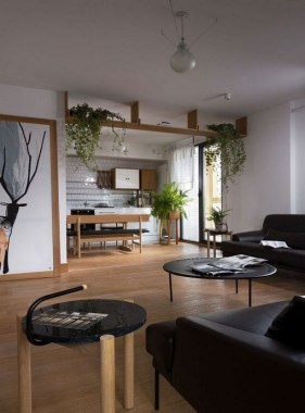 18 Apartment Jazzed Up With Plants For Air Purification 10