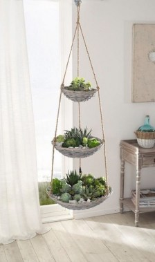 19 DIY Pretty Decorative Plants For Your Fresh Decoration 05
