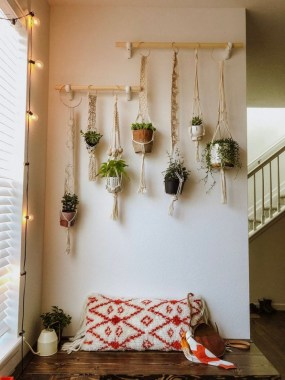 19 DIY Pretty Decorative Plants For Your Fresh Decoration 10