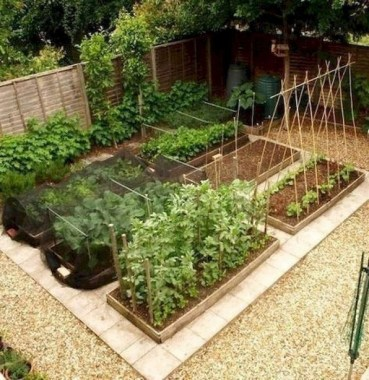 19 Best DIY Vegetable Garden Ideas 20