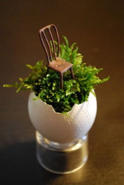 20 Cute DIY Tiny Plants Ideas 10