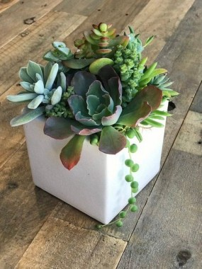 20 Lovely Fall Succulent Planters For Your Home Decoration 20