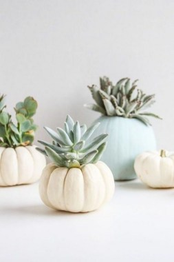 20 Lovely Fall Succulent Planters For Your Home Decoration 25