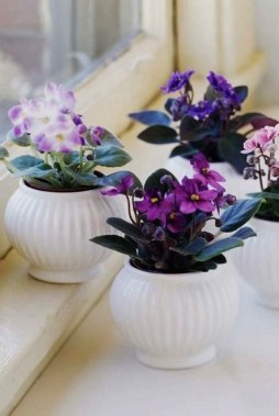 23 Beautiful Pots And Planters To Beautify Your Small Spaces 08