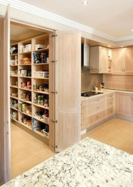 23 Kitchen Pantry Ideas With Form And Function 17