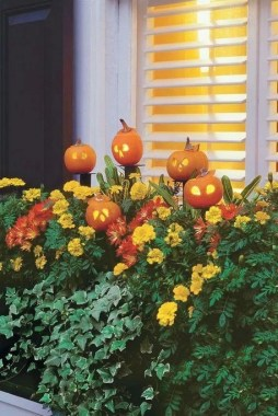 27 Cheap And Easy Fall Window Boxes Ideas 11