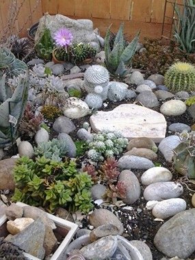 29 Simple Rock Garden Decor Ideas For Your Backyard 20