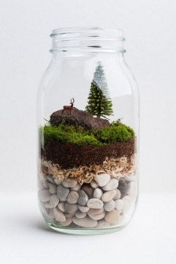 32 Simple Ideas For Adorable Terrariums 31
