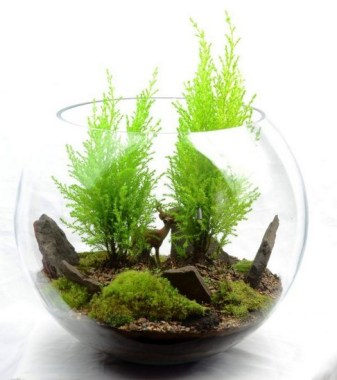 32 Simple Ideas For Adorable Terrariums 32