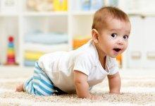 Photo of تعليم الرضيع الحبو