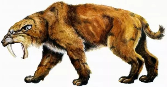 Saber Tooth Tiger Facts For Kids - Best for School Research