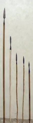 spears - stone age weapons