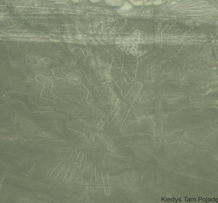 Nazca IV