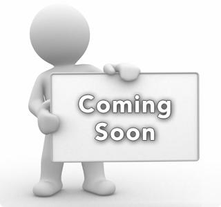 Steyr Bolt roller complete For LP 10 E /LP10 / LP10 COMPACT