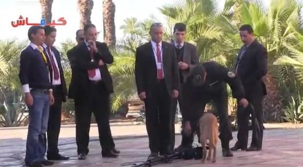 ويليام بورنز في مراكش.. البوليس حاضي الشادة والفادة (فيديو)