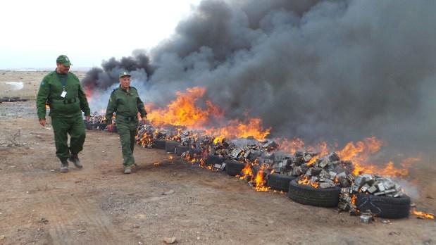 كازا.. إحراق 16 مليار سنتيم من الشيرا!! (صور)