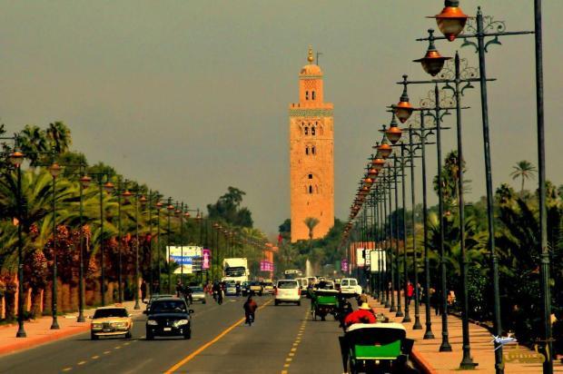 مراكش.. توظيف 20 سائقا سياحيا