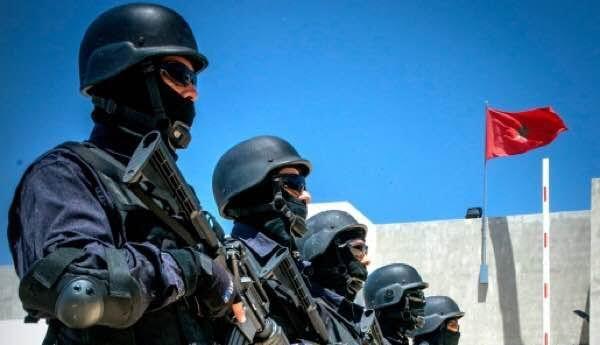 الإرهاب والمخدرات والتزوير.. الخيام يفكك عصابة خطيرة