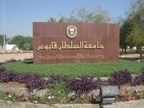 سلطنة عمان.. البحث عن أساتذة جامعيين