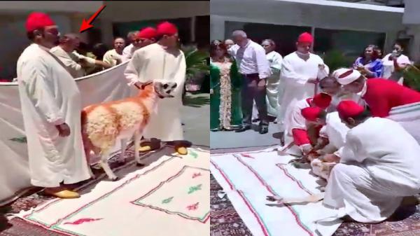 بغا يدير بحال الملك.. الرئيس السابق للماص كيتعلّق فين يتفلّق!! (فيديو)