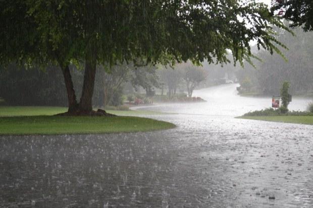 الخميس.. وتستمر الأمطار