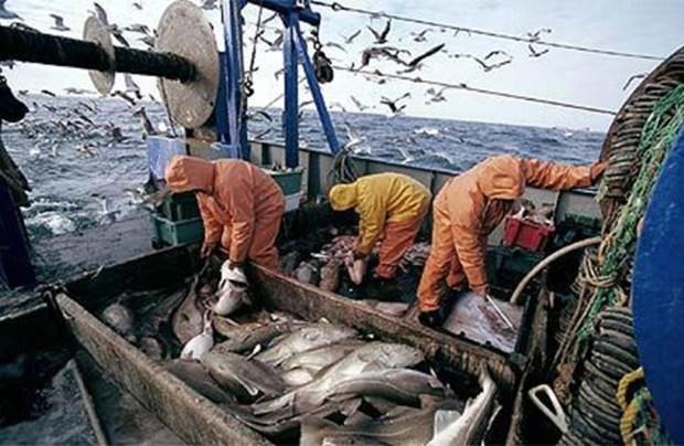 التفاوض حول اتفاق جديد للصيد البحري.. أوروبا ما ساخياش بالحوت ديال المغرب!