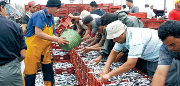 """المصادقة على تجديد اتفاق الصيد البحري.. السمك المغربي """"يهزم"""" البوليساريو في الاتحاد الأوروبي"""