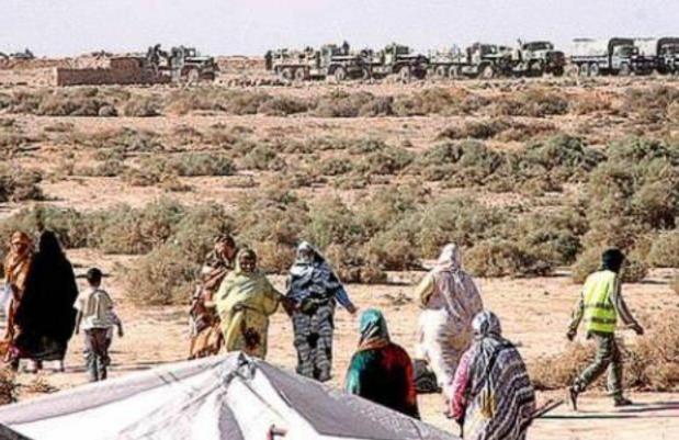 مقتل قيادات من البوليساريو في الطائرة الجزائرية المنكوبة.. فوضى واستنفار داخل مخيمات تيندوف