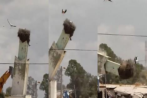 بالفيديو من القنيطرة.. طاحت الصومعة علقو اللقلاق!
