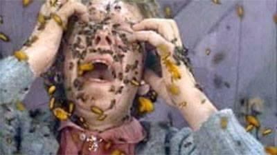 في أول يوم رمضان.. النحل يقتل خمسينيا بنواحي الصويرة