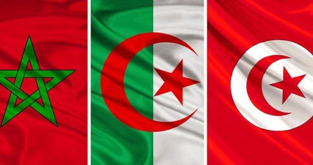لاستضافة مونديال 2030.. برلماني تونسي يدعو إلى ترشح مشترك لدول المغرب العربي