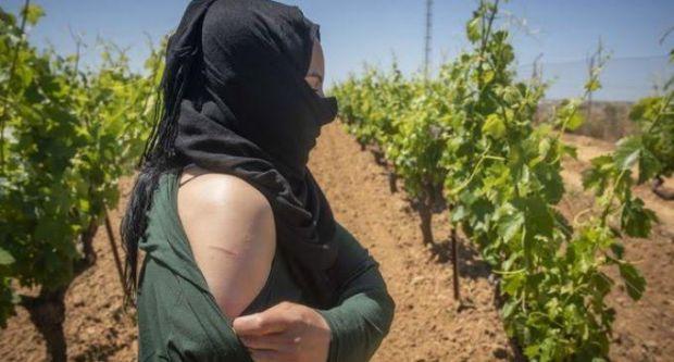 بالفيديو من إسبانيا.. تضامن إسباني مع المغربيات ضحايا التحرش الجنسي في حقول الفراولة