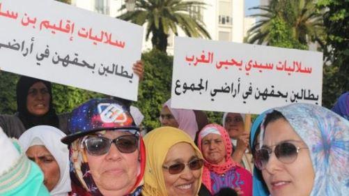 القنيطريات بداو كياخدو حقوقهوم.. بشرى للنساء السلاليات (فيديو)