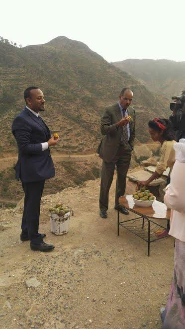 """أطول نزاع في إفريقيا.. مصالحة بين إثيوبيا وإيريتريا بطعم """"أكناري"""""""