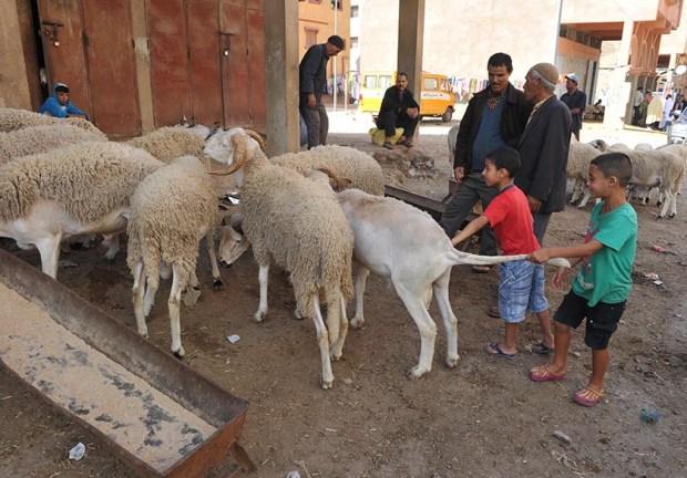 """مبادرة زوينة.. """"عيد سعيد حي نظيف"""" في كازا"""