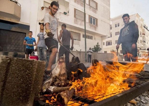 مهن تظهر قبل العيد وتزول بعده.. الحولي يحارب البطالة في المغرب!!