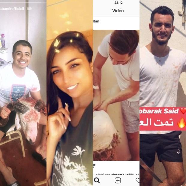 بالصور والفيديو.. مشاهير مغاربة يذبحون ويسلخون على إنستغرام!
