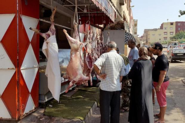 ستزور تمارة والرباط وسلا والخميسات.. قافلة تحسيسية لفائدة 500 جزار بمناسبة عيد الأضحى