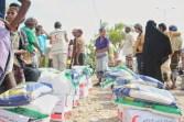 aide-emiratie-yemen2