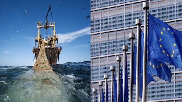الصحراء.. برلمانيون أوروبيون يبحثون عن فوائد اتفاق الصيد البحري