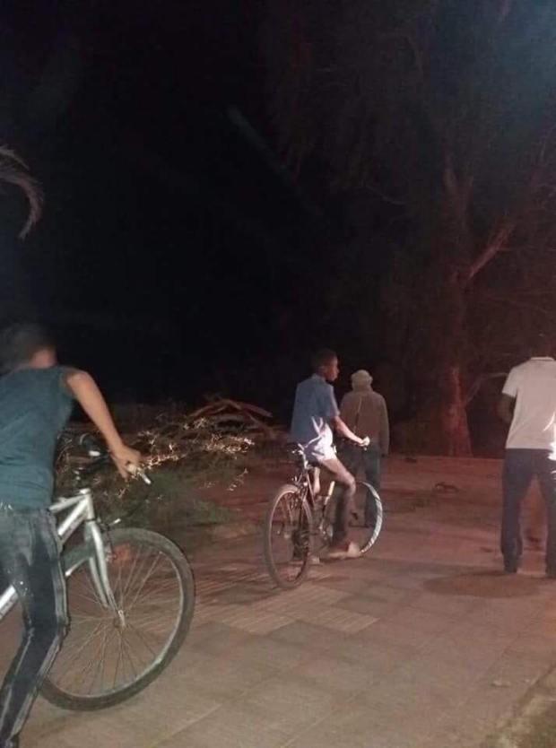 دارتها بيهم شجرة.. انقطاع التيار الكهربائي عن عدة جماعات في زاكورة (صور)