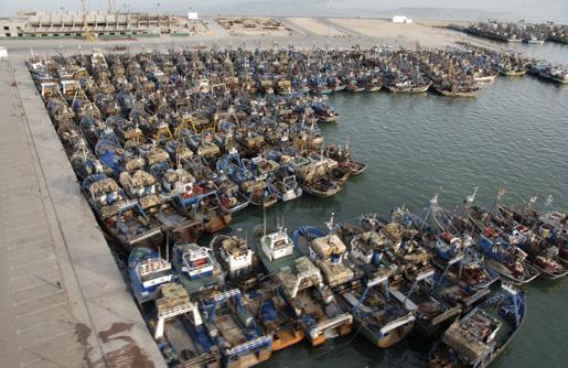 بسبب سوء الأحوال الجوية.. وزارة الصيد البحري تحذر البحارة في جهة الداخلة