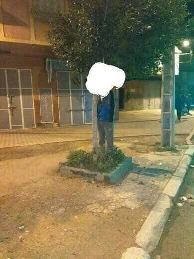 القنيطرة.. انتحار شاب شنقا في شجرة