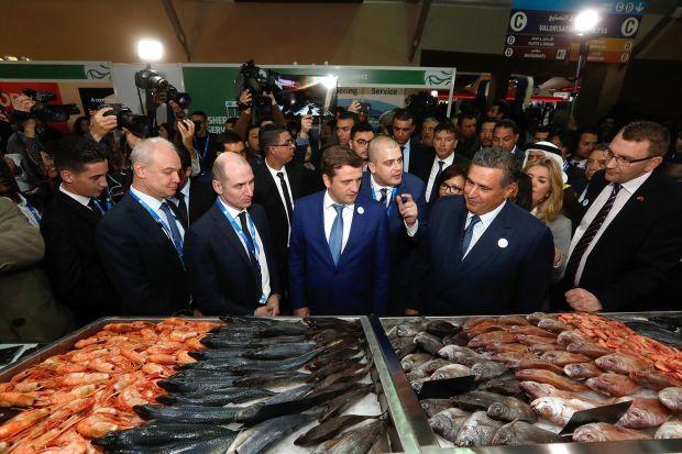 أخنوش: الإنتاج الوطني لقطاع الصيد البحري ارتفع إلى أزيد من مليون طن