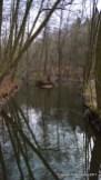 Teich des Borbachs