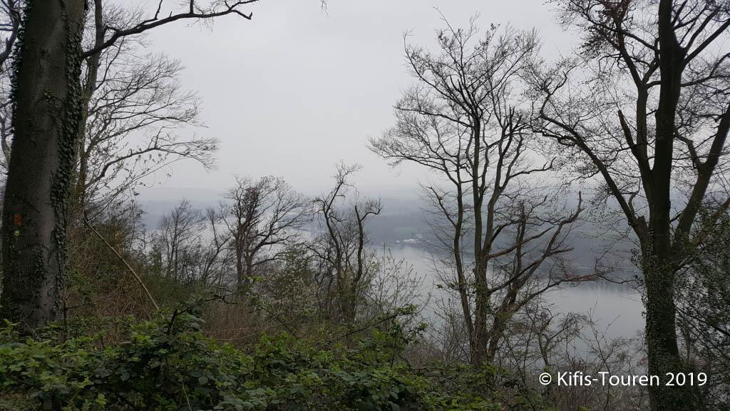 Im Schellenberger Wald
