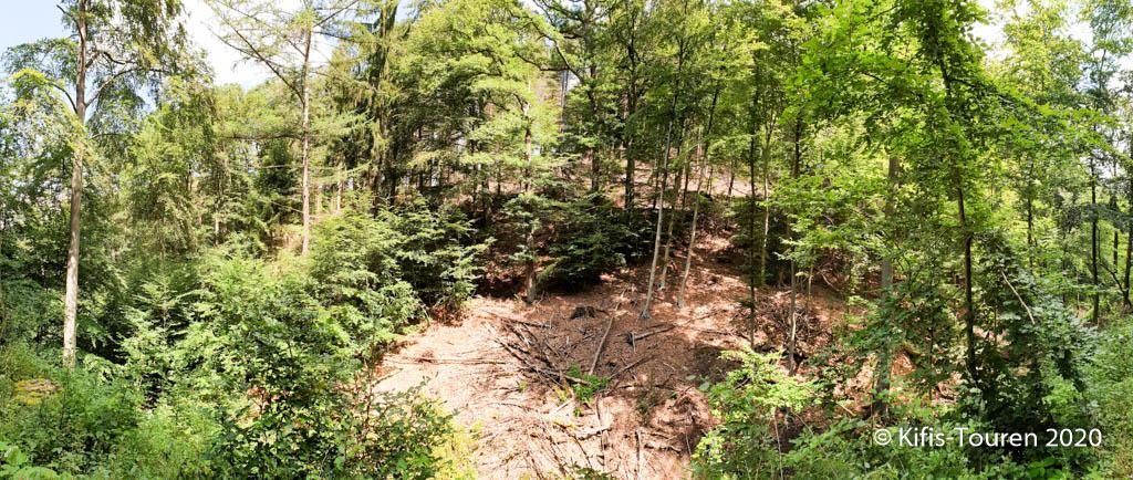 Arboretum Wuppertal