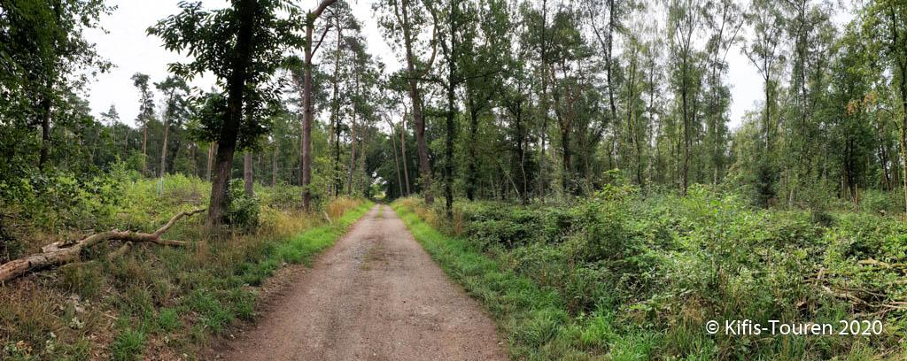 Die Lippe – von Schermbeck nach Hünxe